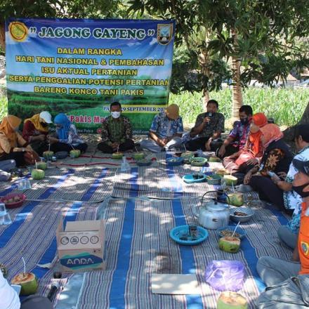 Album : Jagong Gayeng dengan Dinas Pertanian
